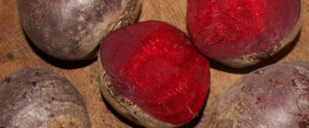 Rote Beete: